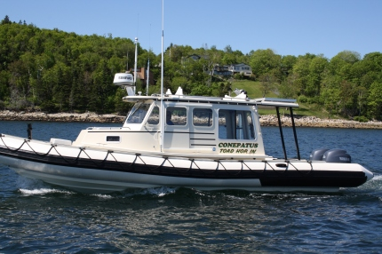 RW 9.11 Trawler RIB