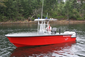 The Boat in stock is ready for Power & Options